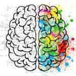 Kako raste mozak